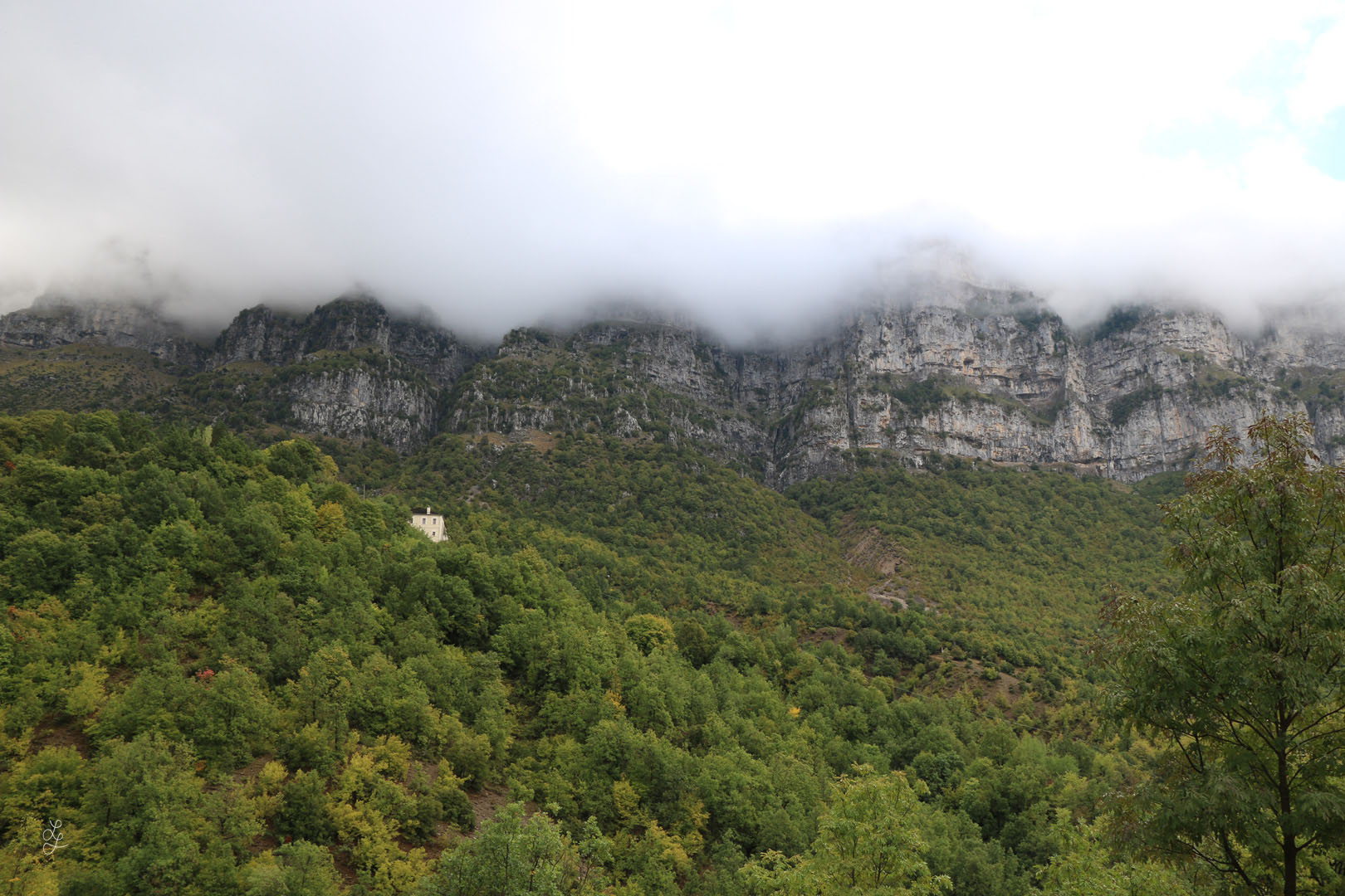 landscape copy