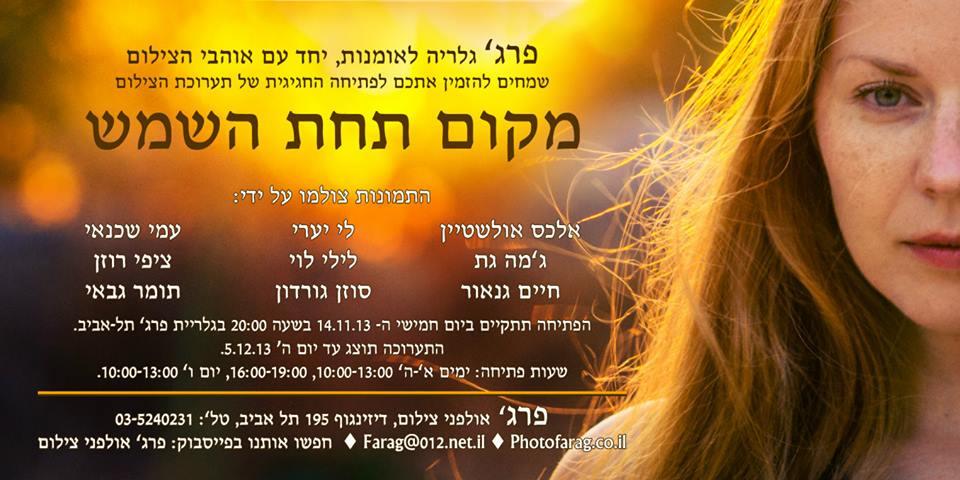 exhibition farag 14.11.2013